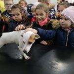 Fotografia detí hladkajúcich psíka v rámci projektu Vzdelávaj sa, pomáhaj a chráň!.